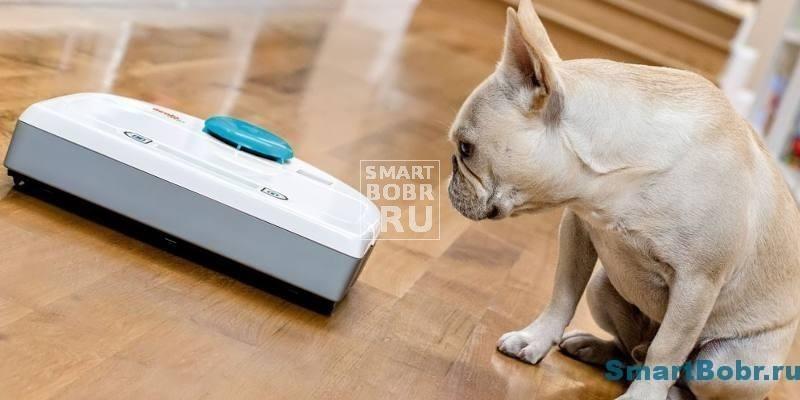 рейтинг и отзывы роботов пылесос