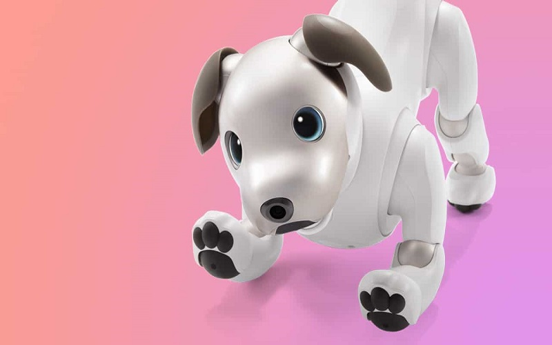 GadgetMatch-Aibo-20171103-Featured-Image