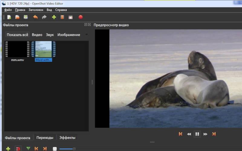 бесплатный видеоредактор OpenShot Video Editor
